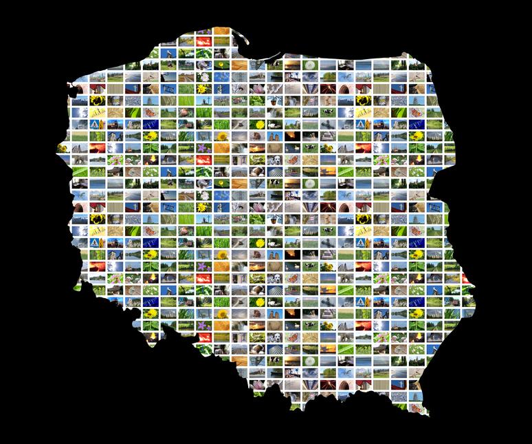 Potencjał bazy Przedsiębiorców m.in. dla branży Fotowoltaika.